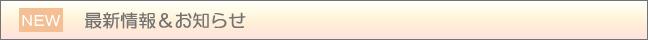 鉄道模型レイアウト・ジオラマ・プラモデル向けLEDパーツ販売 マイクラフト最新情報とお知らせ!